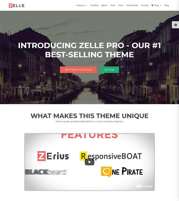 Download Zelle Pro One Page Business Theme