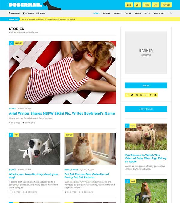 Doberman Magazine WordPress Theme