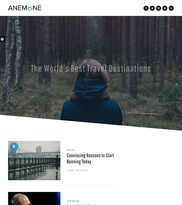 Anemone Theme Magazine WordPress