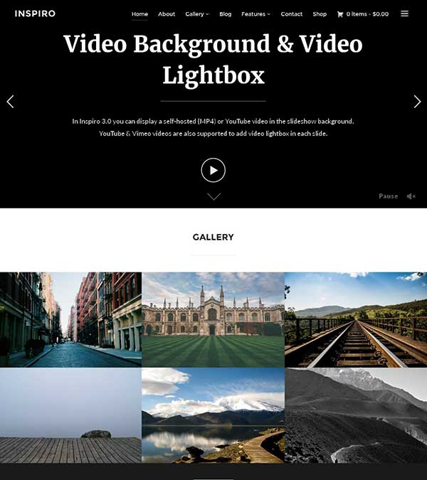 Inspiro Theme Portfolio WordPress