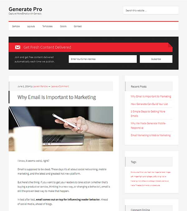 Generate Pro Email Leads WP Theme