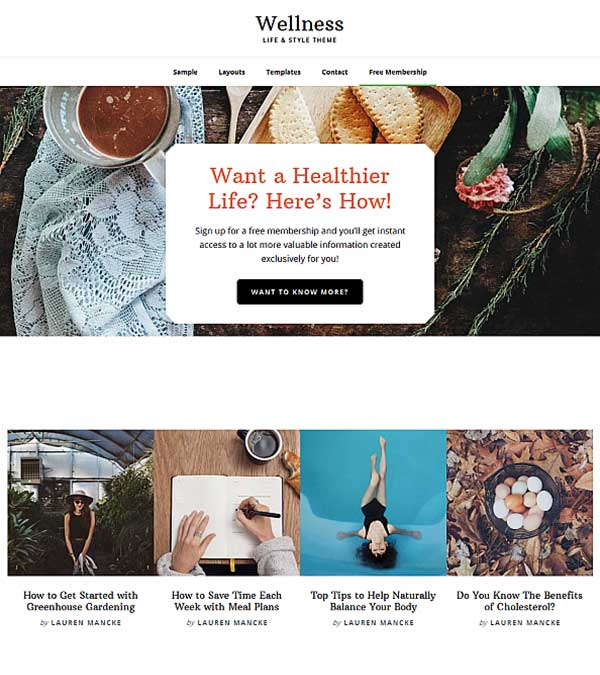 Wellness Pro LifeStyle WordPress Theme