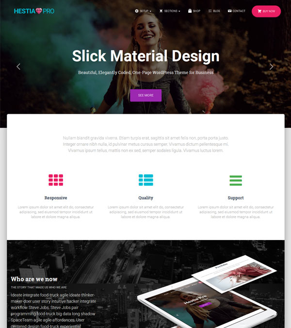 Hestia Pro Material Design WP Theme