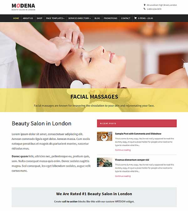Modena Small Business WP Theme