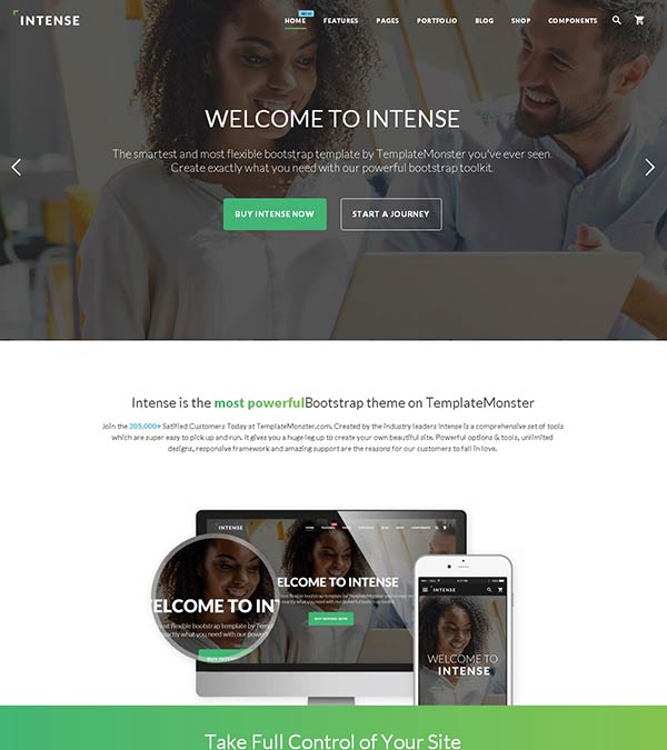 Download Intense Multipurpose Website Template