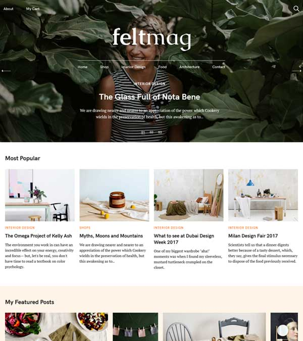 Download Felt Magazine WordPress Theme