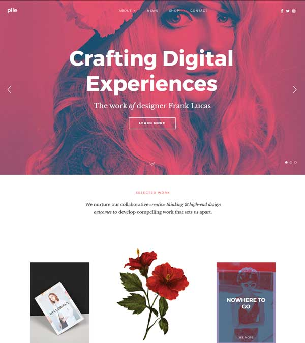 Pile Best Portfolio WordPress Theme